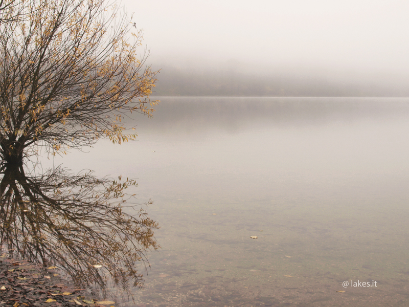 lago Piccolo di Avigliana, nebbia