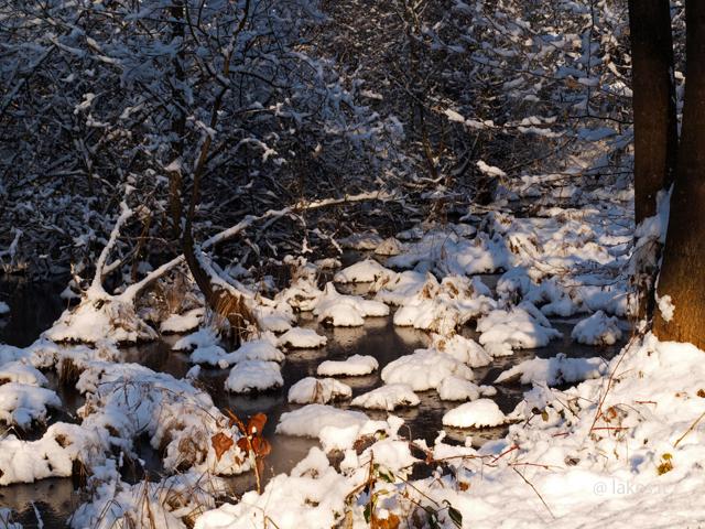 Neve e ghiacio, nelle paludi dei Mareschi