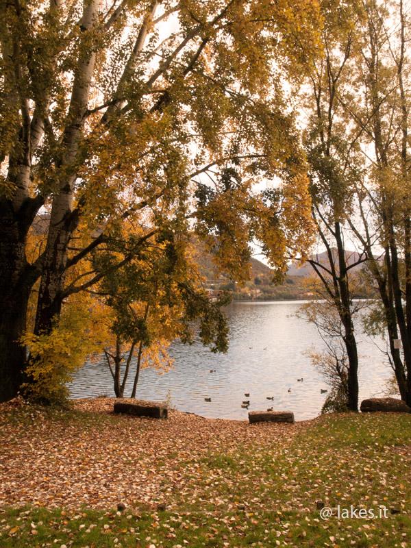 baia grande dei laghi di Avigliana