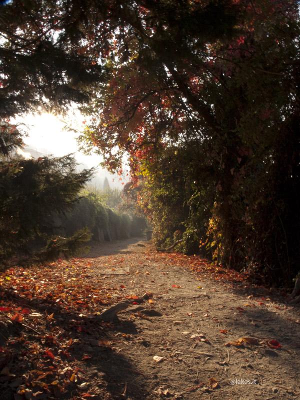 Passeggiata sul lago Grande di Avigliana