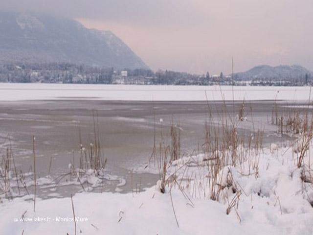 Lago Piccolo di Avigliana, inverno e gelo 2012